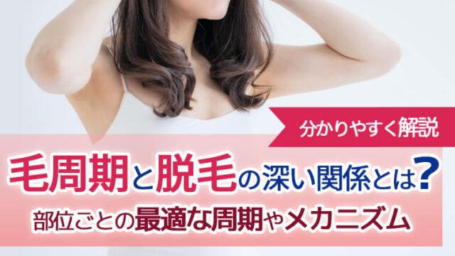 毛周期と脱毛の関係